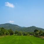 A day trip to Kanchanaburi